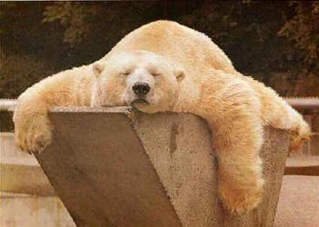 stanchezza