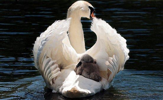 modi di essere mamma